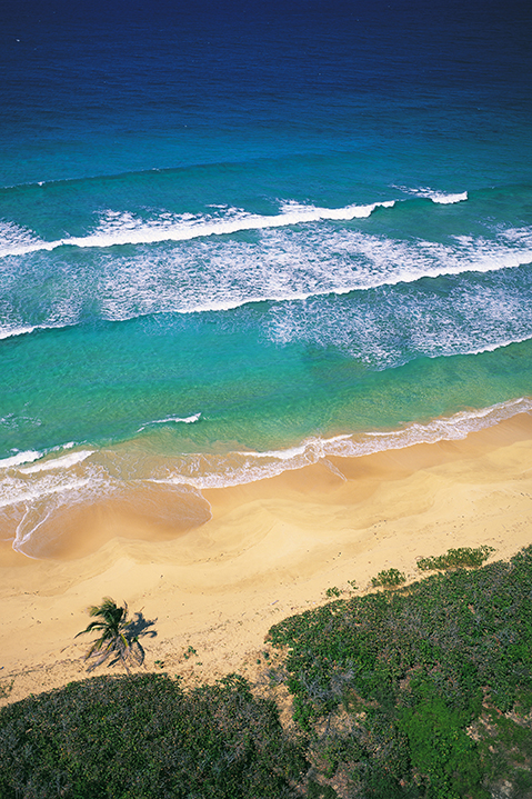 G9 - Aerial of Puerto Rico Beach